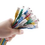 Hand holding colorful internet cables. Clipping path included.